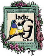 Lady G my Mail